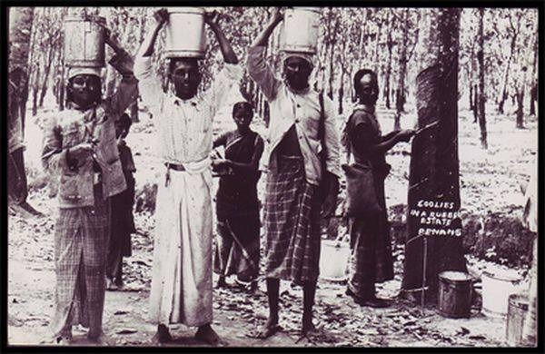 pendatang India